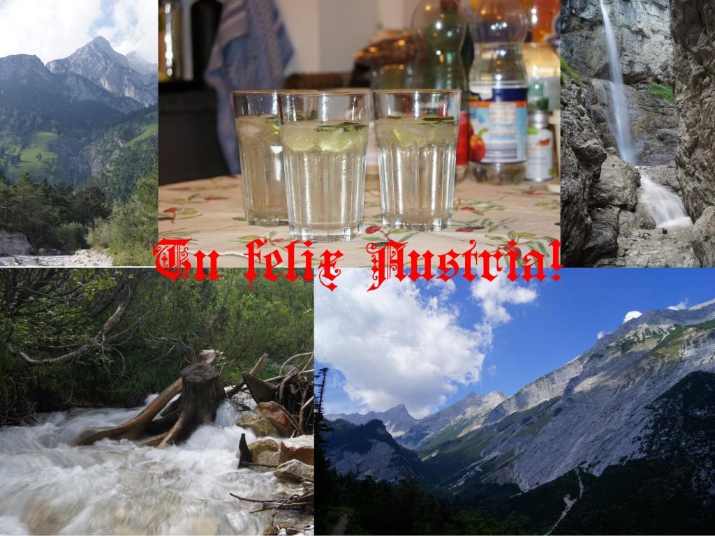 Tu felix Austria!